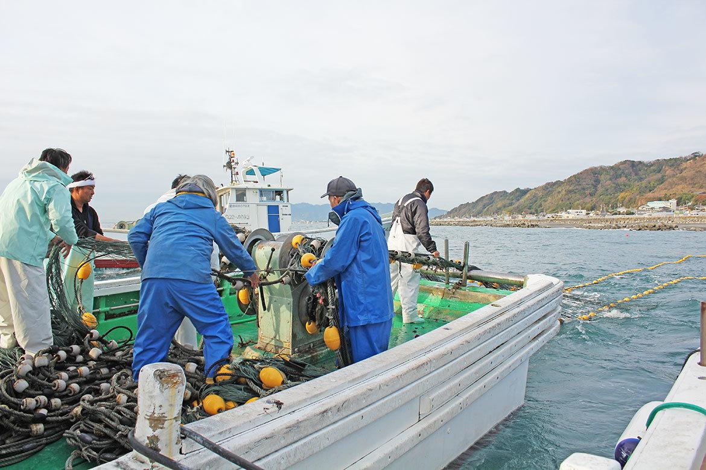 しらす漁乗船体験レポート