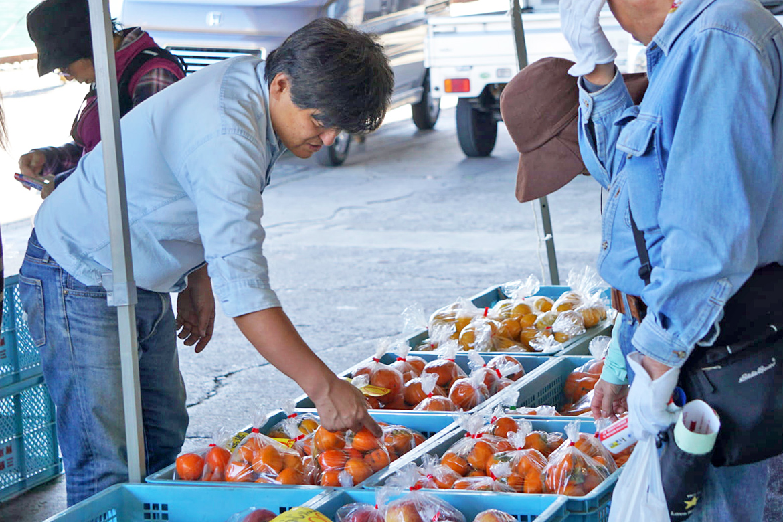 地元農家の販売