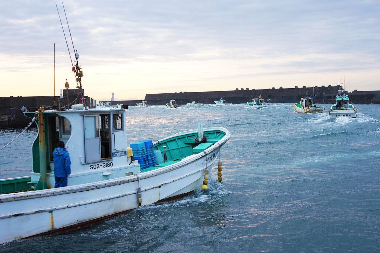 用宗漁港しらす漁