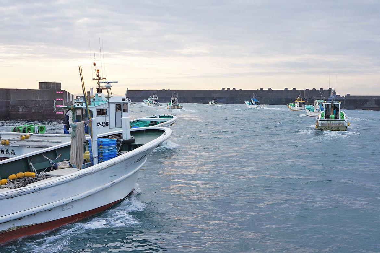 しらす漁船出港