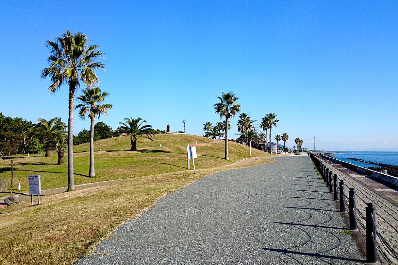 fuji_hironopark_01.jpg